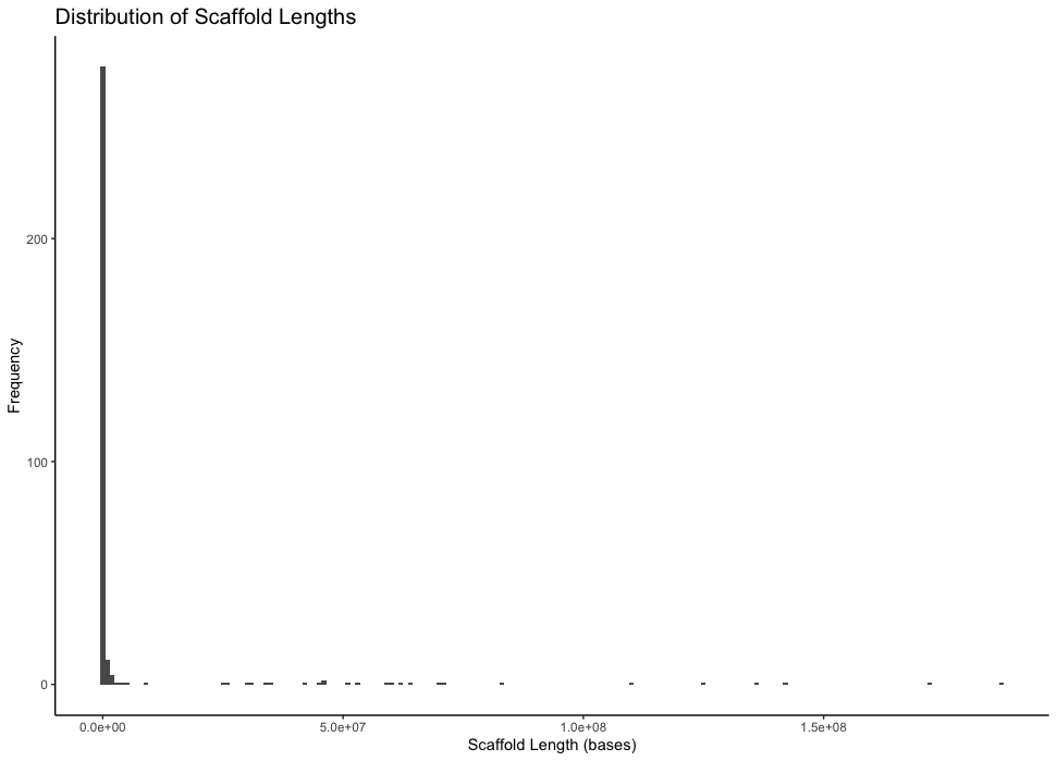 A frequency histogram of scaffold lengths with binwidth=100000.
