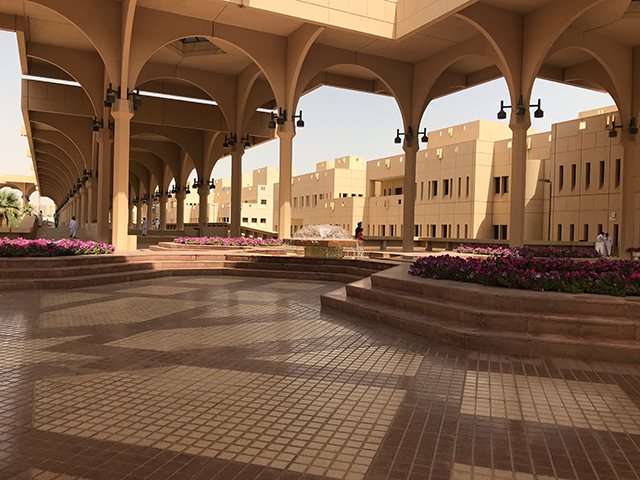 At King Saud University, several of us made our way to the engineering buildings travelling under high arches that framed fountains with beds of flowers.