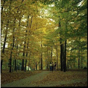 Dunn's Woods in 1956. Indiana University Archives Photograph Collection, P0029490