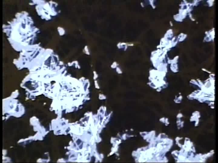 Still image from What the Water Said, Nos. 4-6