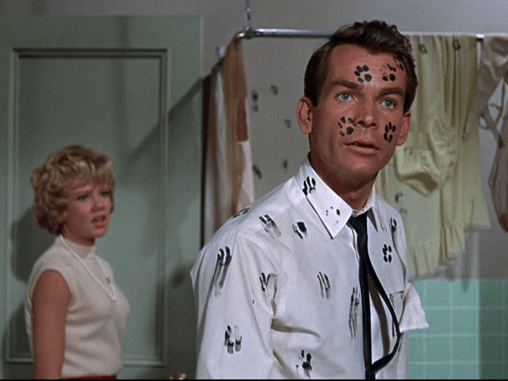 Hayley Mills and Dean Jones in That Darn Cat!