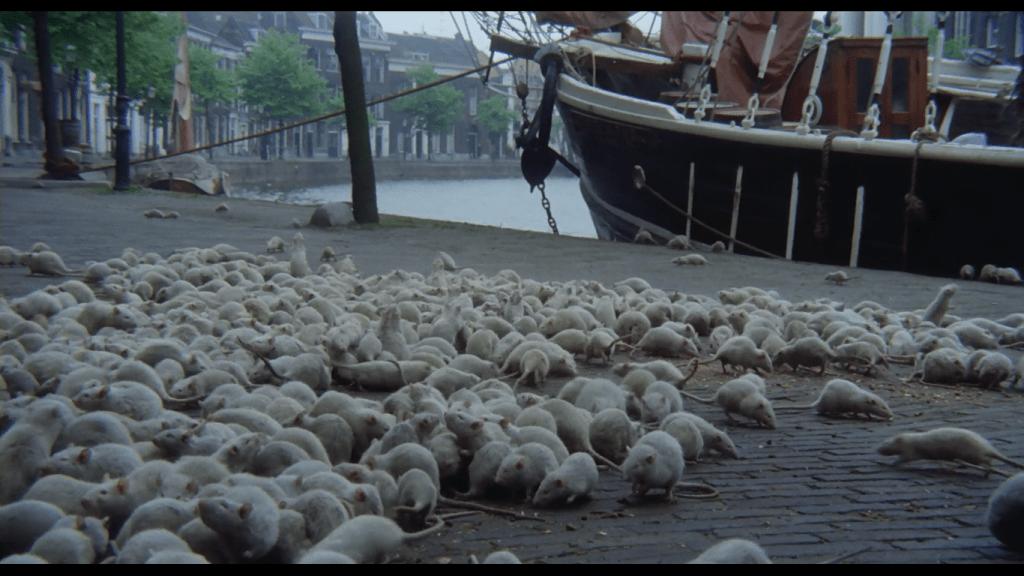 screenshot of the rats in Nosferatu