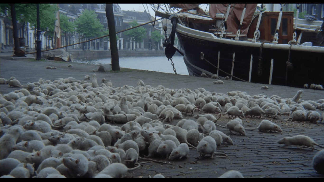 screenshot of the rats in Nosferatu