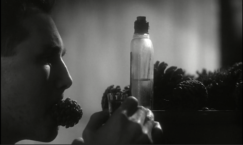 screenshot from Institute Benjamenta. Jakob has a pinecone in his mouth and a shot of liquor in his hand.