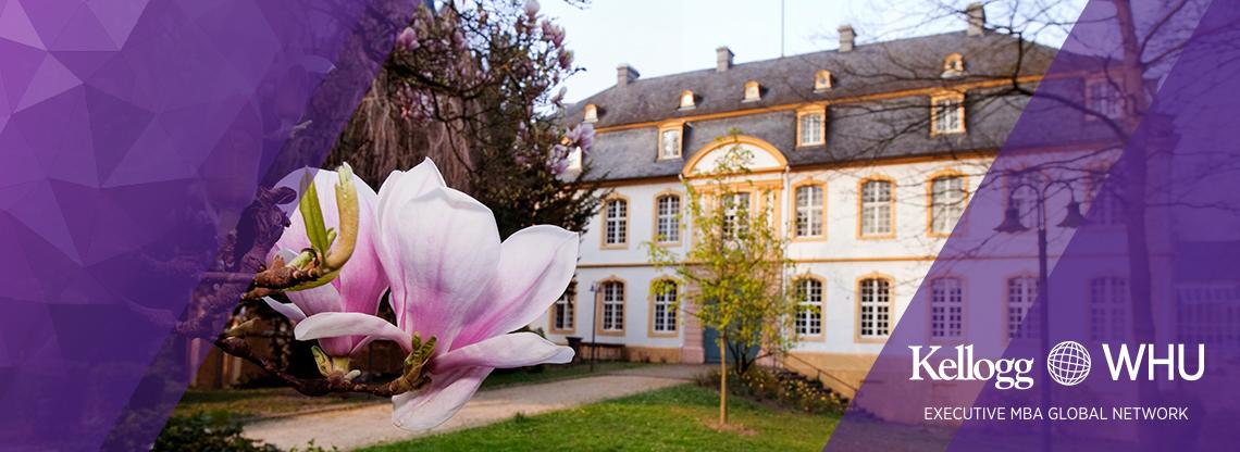 Kellogg Executive MBA Global Network: Kellogg-WHU in Germany