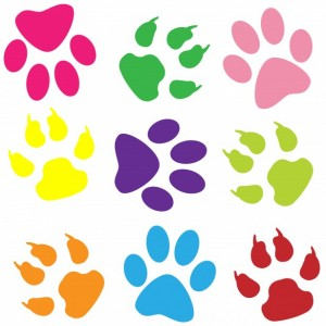 paw-prints-colorful-background