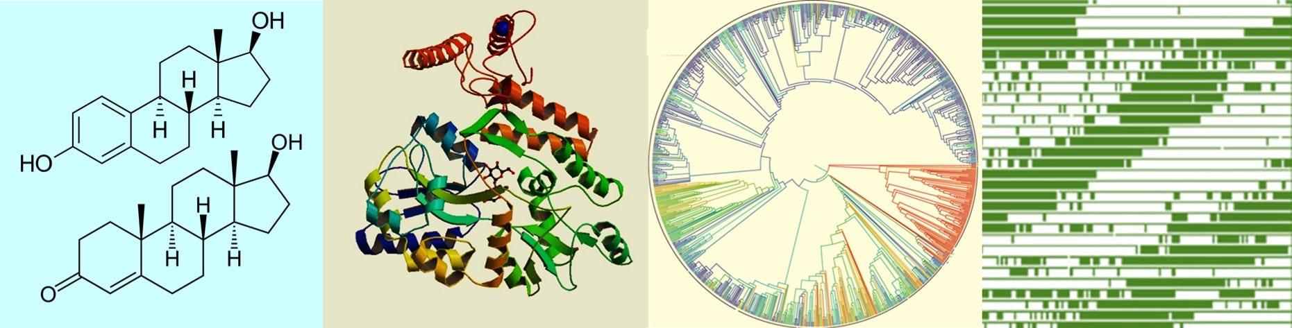 Biology@memphis