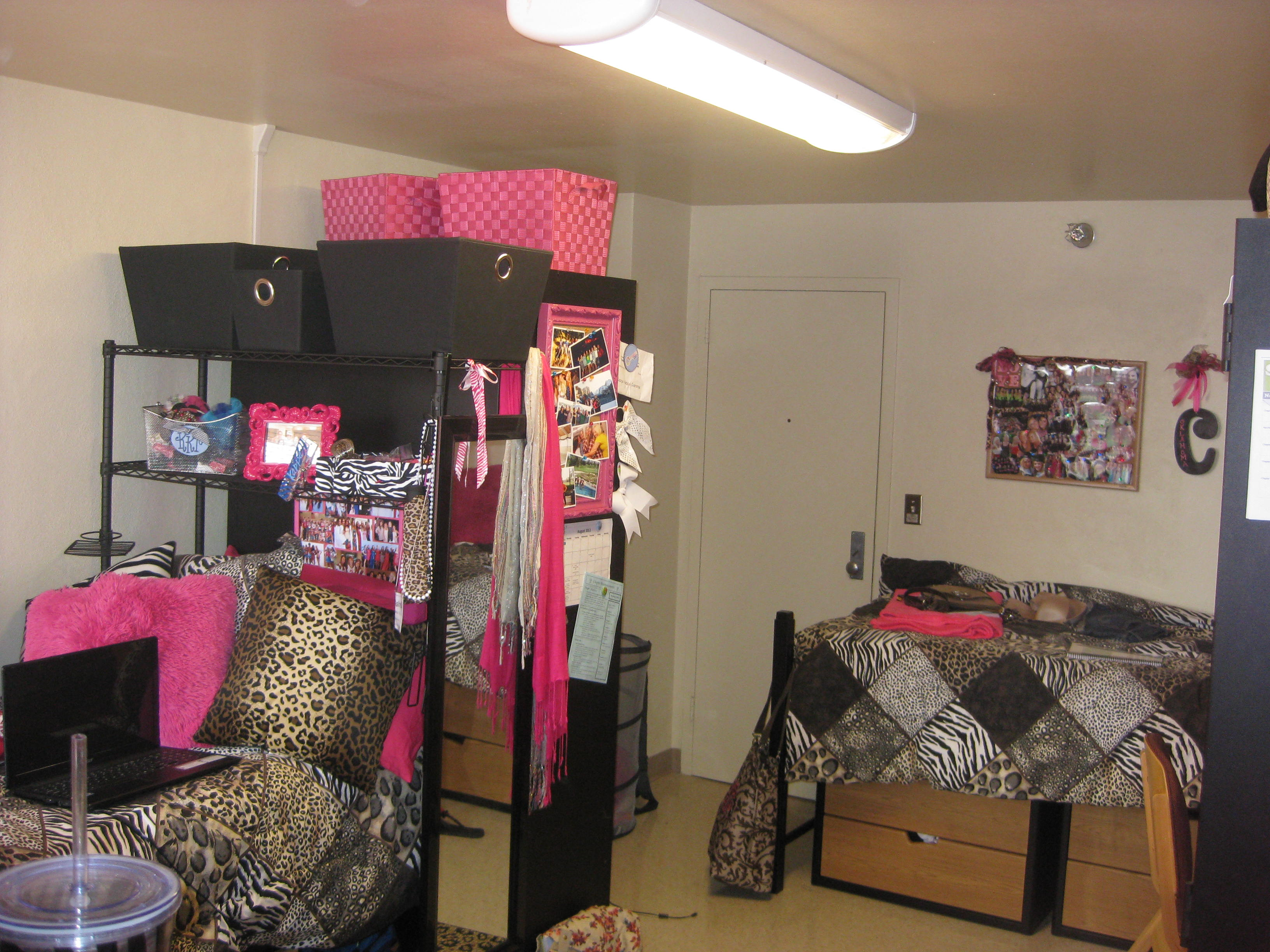 Dorm Tips Amp Advice Boomer Blogs