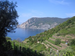 A view from my Cinque Terre hike