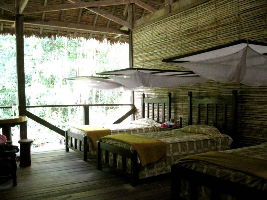Our rooms at the Refugio Amazonas lodges. The fourth wall to our room is a giant window, which made me scared animals would come in at night, but we never had any cuddling with us.