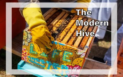 Weekly Beesearch: The Beekeeper's Hive