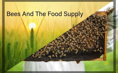 Weekly Beesearch: Food Fight! Bees and Farmers Unite