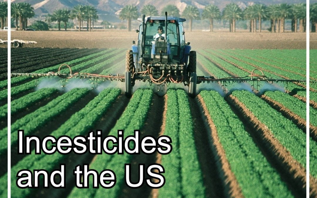 Beesearch: The Troubling Trend of Incesticides in the US