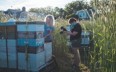 NJ and NY Crews Beegin Summer Production