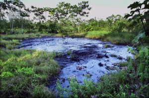 TEXACO OIL WASTE PIT IN THE AMAZON
