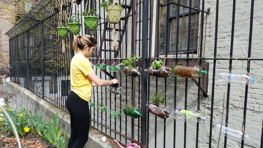Student Spotlight: Kat Cognata Partners with Harlem Community Garden