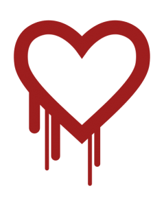 Dr. Hayes on Heartbleed