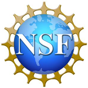 National Science Foundation awards $2.5 million grant to the Seidenberg School