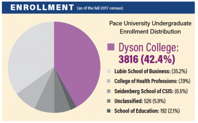 Dyson College by the Numbers