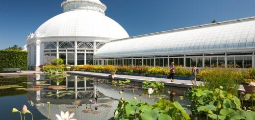 Haupt Conservatory at NY Botanical Garden