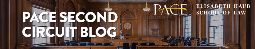 Pace Second Circuit Blog