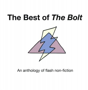 Bolt Cover Advanced copy copy