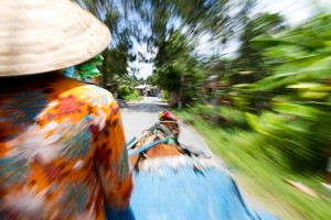 Tearing through a village along the Mekong Delta with a lady of few words and her flower decored horse, Vietnam. Photo by: Stan Olszewski/SOSKIphoto.com