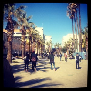 Photo of students walking down the paseo on the first day of semester. Admin building and palm trees in view.