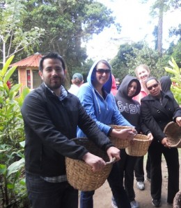 Students with baskets prepare to pick coffee beans