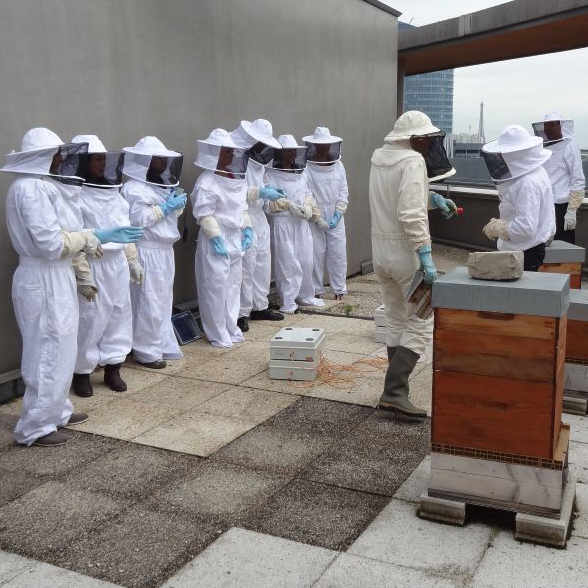 Students in bee keeping outfits in Paris