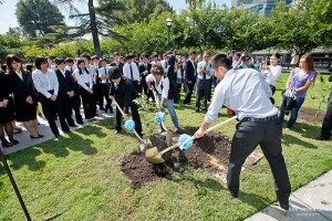 SJSU Hosts Cherry Tree Planting Ceremony and Forum