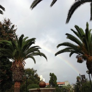 Rainbow across grey sky above 7th Street Fountain, framed with palm trees