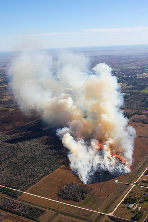 Texas Wildfire Test