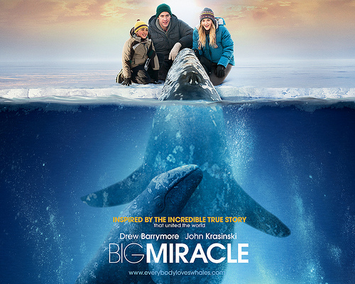 movie poster showing whale reaching out of ice to touch people