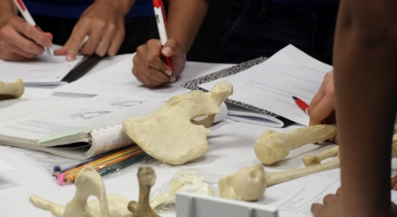 Young Special Agents Get Hands-On Experience at SJSU's First-Ever CSI Camp