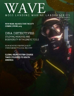 Keeping Up With Marine Science Students With WAVE Magazine