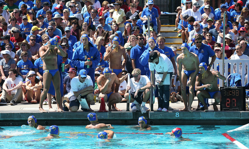 Men's water polo coaches gather around their players at the edge of the pool.