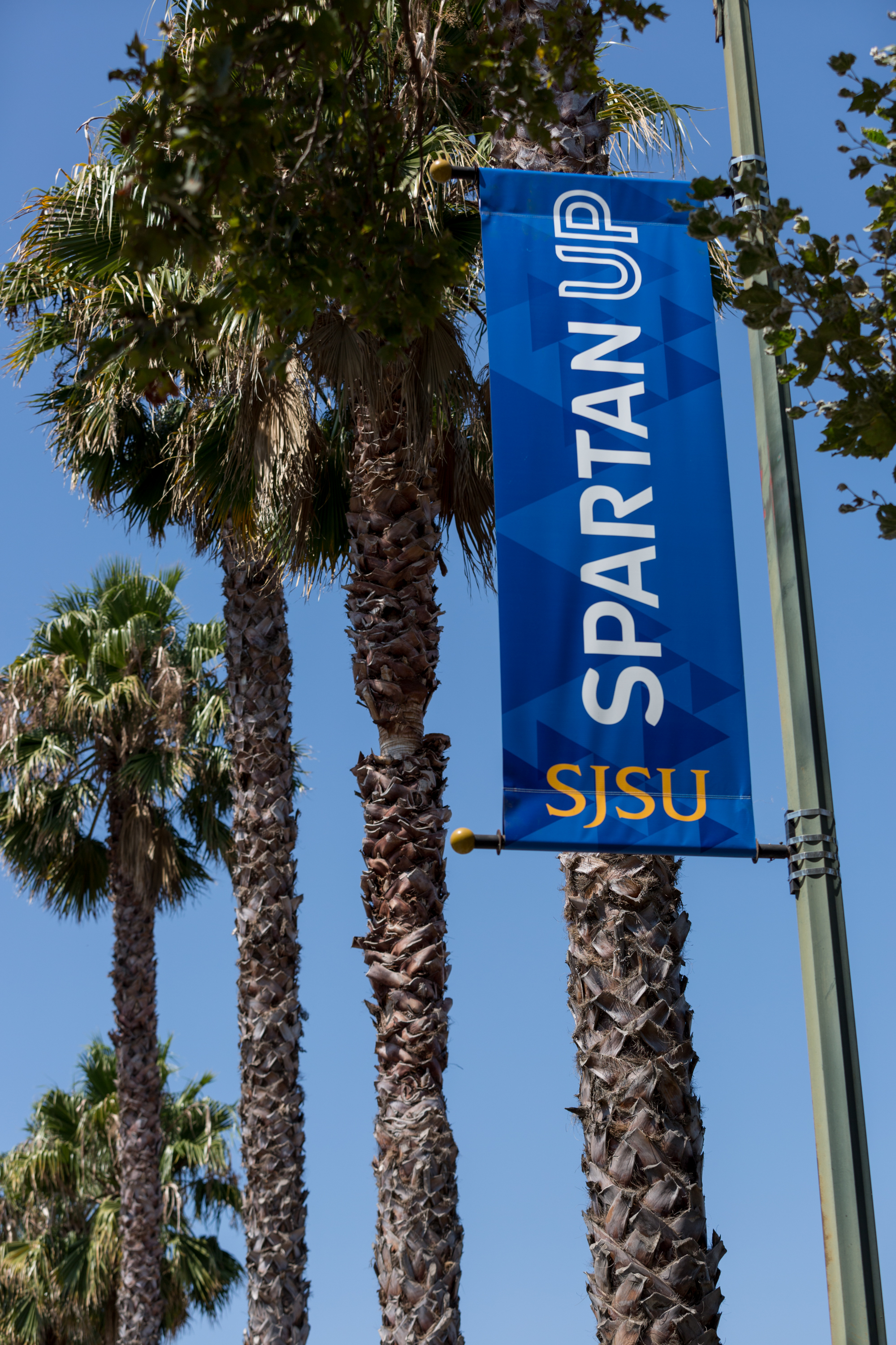 New banners line the road to CEFCU Stadium (Photo: David Schmitz).