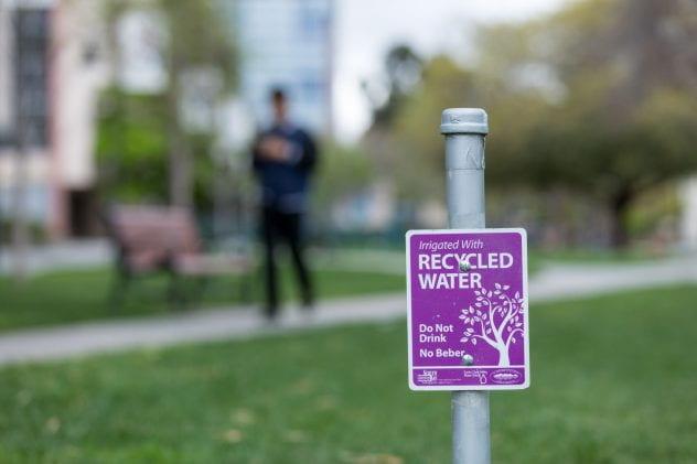 Recycled water sign at SJSU