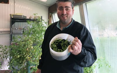 SOMS Tech Ed Teacher Aims to Cultivate Agriculture Literacy