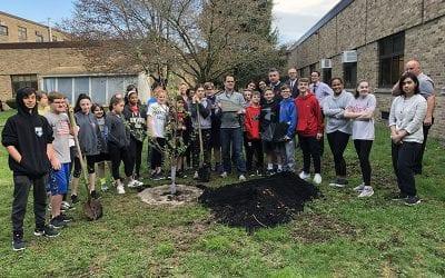 NYS Senator Carlucci Donates Apple Tree to SOMS Courtyard