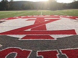 TZ Turf Field logo