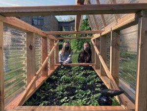 Students peek through the SOMS greenhouse garden