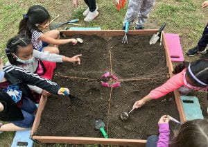 First-graders engaged in archeology dig