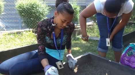 Project REACH's Community Garden