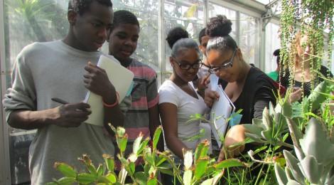 Urban Scholars: Greenhouse