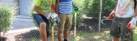 Project Reach: Community Garden