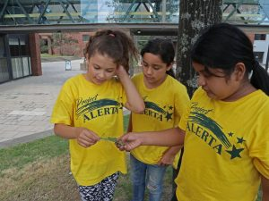 A group of three students find a moth and take turn looking at it