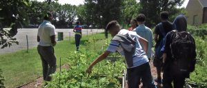 The last student in the back of this photo reaches in to look at the plants while his peers walk to see the rest of the garden.