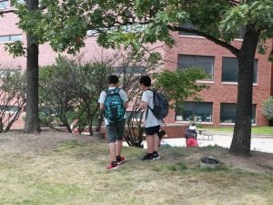 two student analyzing a tree.